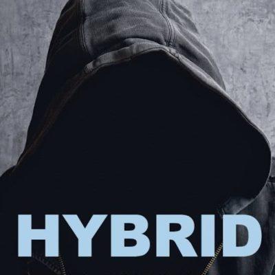 Hybrid – Greet Ilegems