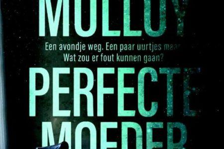 Perfecte moeder – Aimee Molloy
