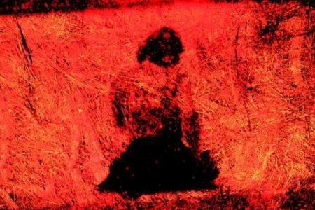 Het scherventapijt – Loes den Hollander