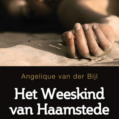 Het weeskind van Haamstede – Angelique van der Bijl