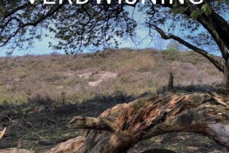 De Veluwse verdwijning – Bertina Mulder