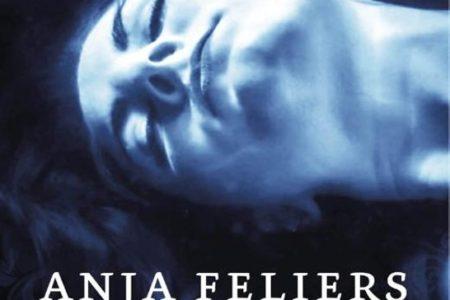 Gebroken glas – Anja Feliers