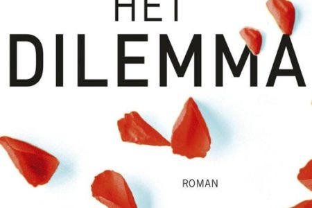 Het dilemma – B.A. Paris